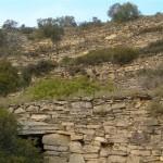 Escala i marges a la vinya del Sabater (Copons, Països Catalans)