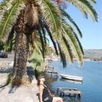 El riu Temo al seu pas per Bosa (Sardenya, 2009)
