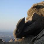 Rocce 'e Luras al Limbara - Foto de Maltìnu Dibèltulu